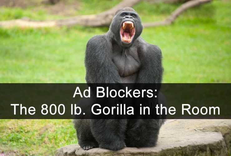 Ad blockers are the 800 lb gorilla in the room