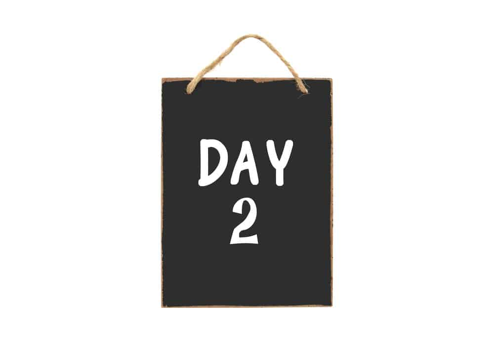 Day 2 Content Strategy for Niche Websites - Niche Academy by Fat Stacks