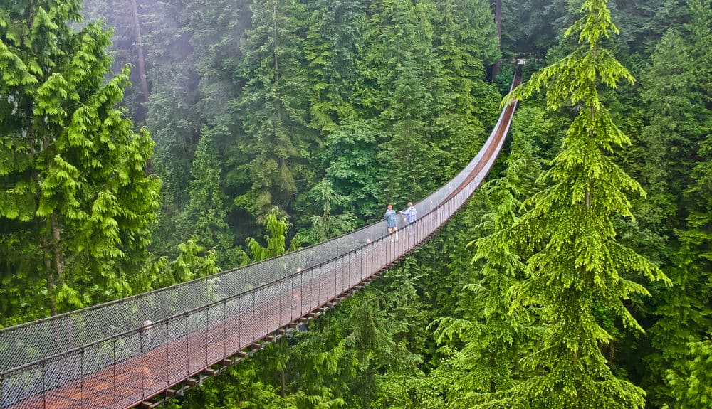 Capilano Suspension Bridge in North Vancouver BC,