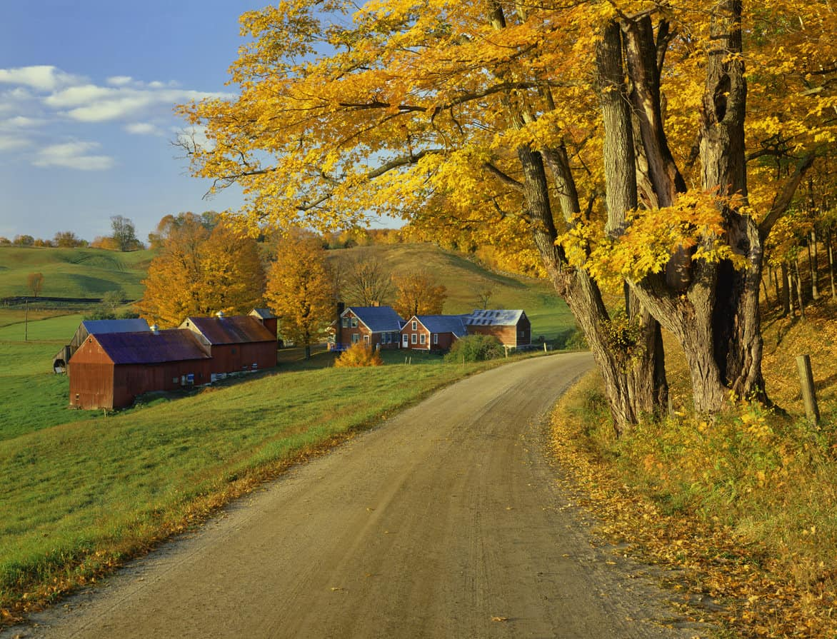 Vermont road by farm in Autumn with colorful leaves