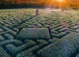 Aerial view to the huge Halloween's Corn Maze in Pennsylvania, Poconos Region.