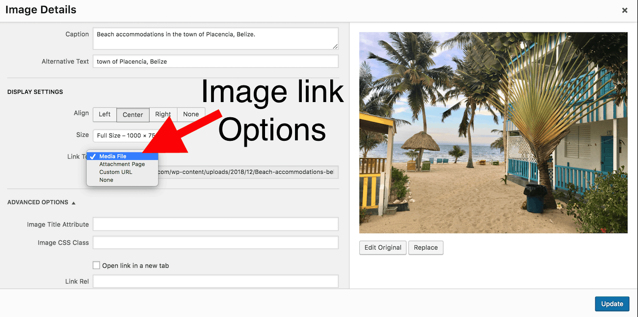 Screenshot of WP image editor link options