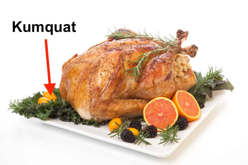 kumquat garnish turkey