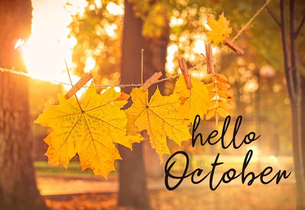 Hello October photo