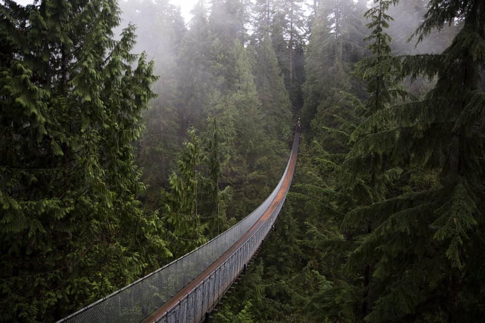 The Capilano Suspension Bridge in North Vancouver, BC.