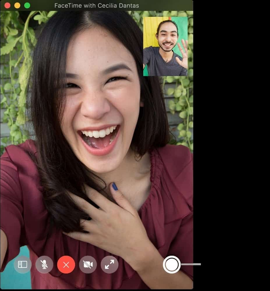 Screenshot of Facetime capturing live photos