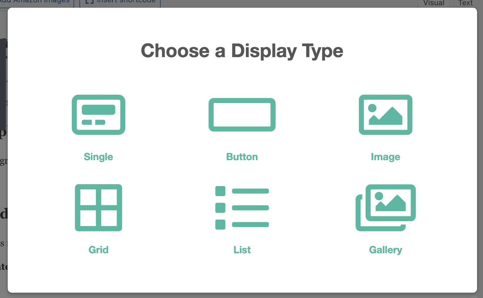 Lasso Display Options