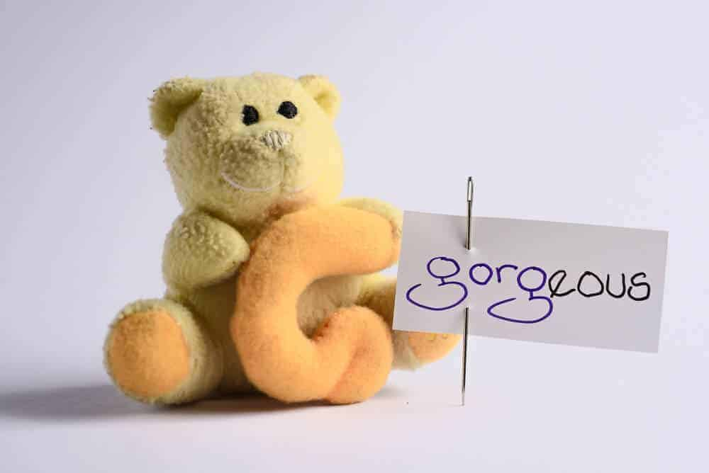 """A teddy bear and a cue card with the word """"gorgeous."""""""